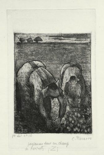 Paysannes Dans Un Champ De Haricots by Camille Pissarro at