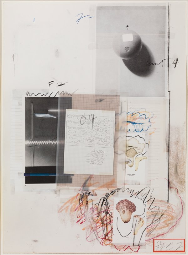Natural History Part I: No. Viii by Cy Twombly