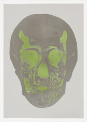 Dove Grey Gunmetal Leaf Green Skull by Damien Hirst at