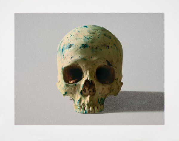 Studio Half Skull, Face On (with Diamond Dust) by Damien Hirst at Damien Hirst