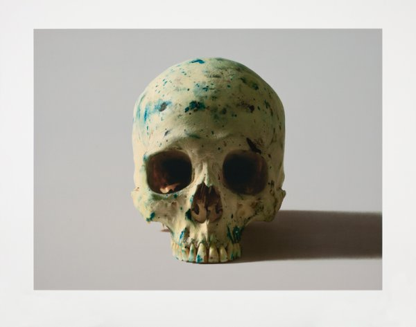 Studio Half Skull, Face On (without Diamond Dust) by Damien Hirst at Damien Hirst