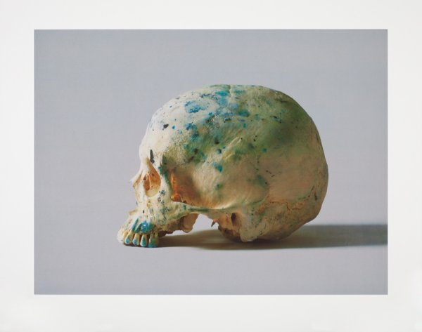 Studio Half Skull, Half Face (without Diamond Dust) by Damien Hirst at Damien Hirst