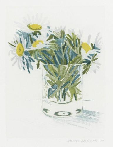 Marguerites by David Hockney