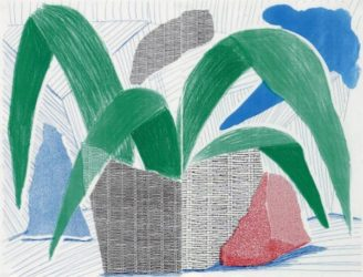 Green Grey & Blue Plant, July 1986 by David Hockney at Kenneth A. Friedman & Co.