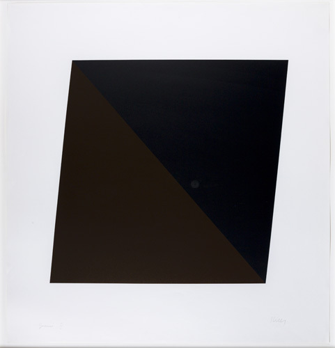 Black/brown by Ellsworth Kelly