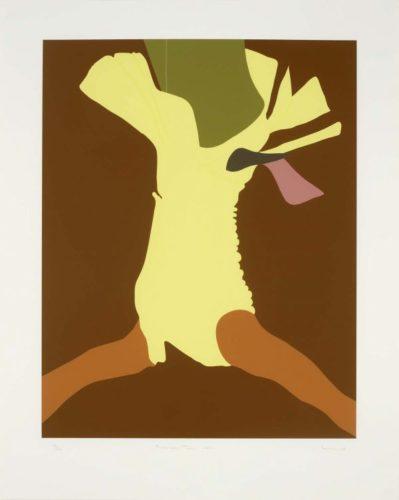 American Tan Xxvi by Gary Hume RA at