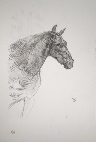 Le Poney Philibert by Henri de Toulouse-Lautrec