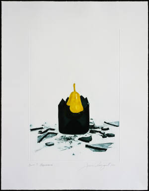 Appearance by James Rosenquist