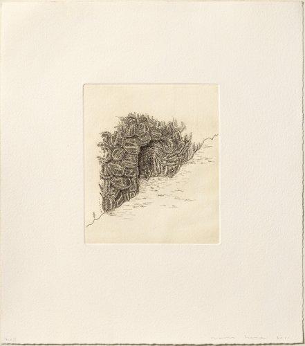 Cova by James Siena