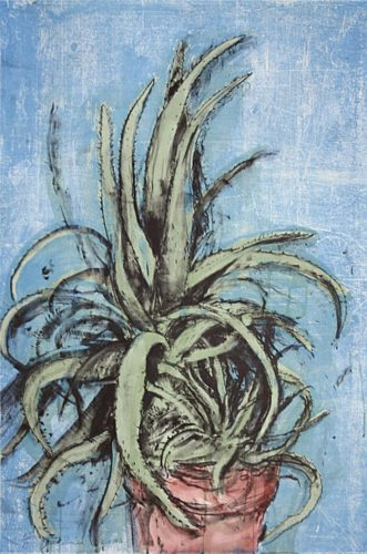 New Mexican Aloe by Jim Dine