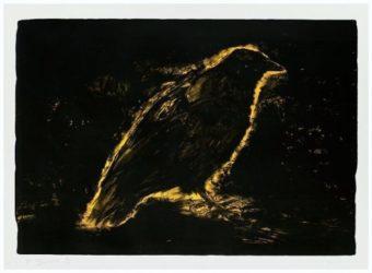 Raven by Jim Dine at Kunzt