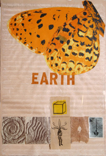 Earth (with Butterfly) by Joe Tilson