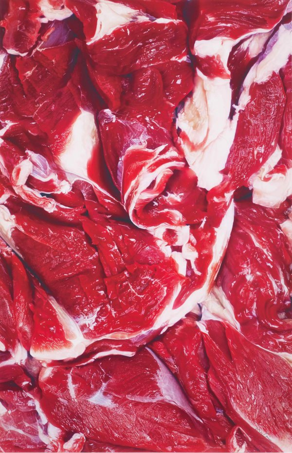On Vegetarianism by Marc Quinn