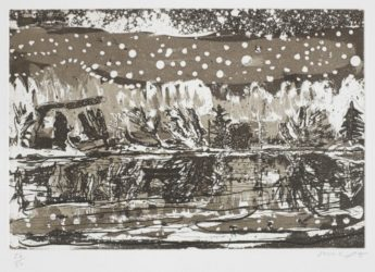 Night Fishing by Peter Doig at