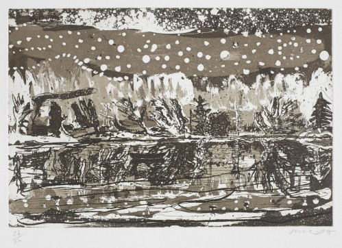 Night Fishing by Peter Doig at Peter Doig