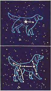 Canis Major/minor by Richard Bosman