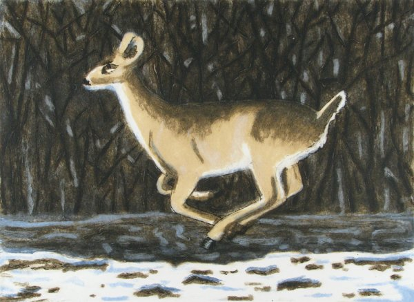 Winter Deer by Richard Bosman at
