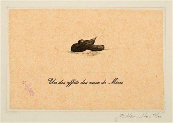 Un Des Effets Des Eaux De Miers by Richard Hamilton