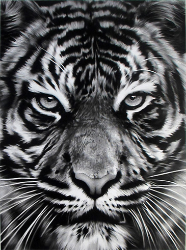 Untitled (leo) by Robert Longo at Hamilton-Selway Fine Art