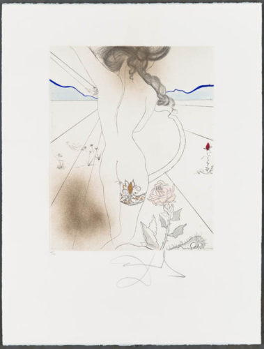 Nu À La JarretiÈre (nude With Garter) by Salvador Dali at Christopher-Clark Fine Art