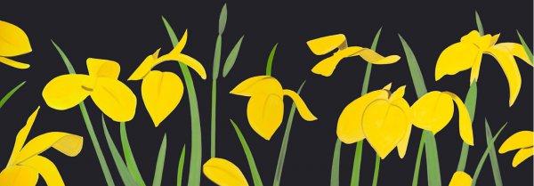 Yellow Flags 2 by Alex Katz