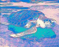 Turtle by  at Vertu Fine Art