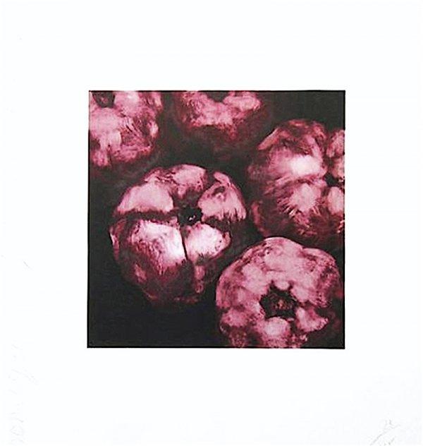 Pomegranates by Donald Sultan