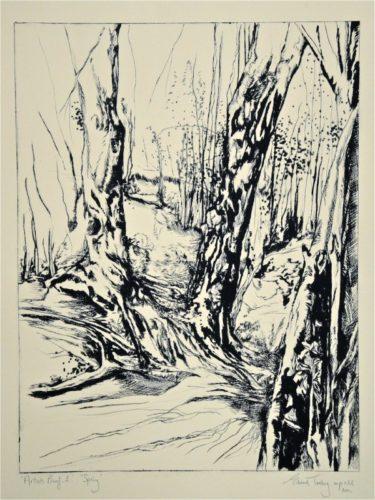 Spring by Edward Twohig
