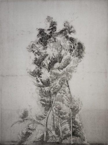 Alberone by Eric Holzman at