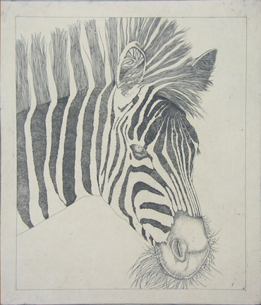 Untitled (zebra) by George Whitman at
