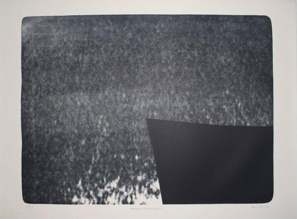 L 1976-25: Hommage à Eva Bergman by Hans Hartung