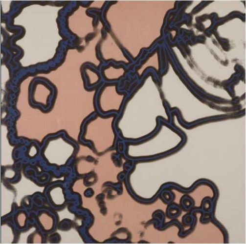 Close Up Vi by Harold Cohen