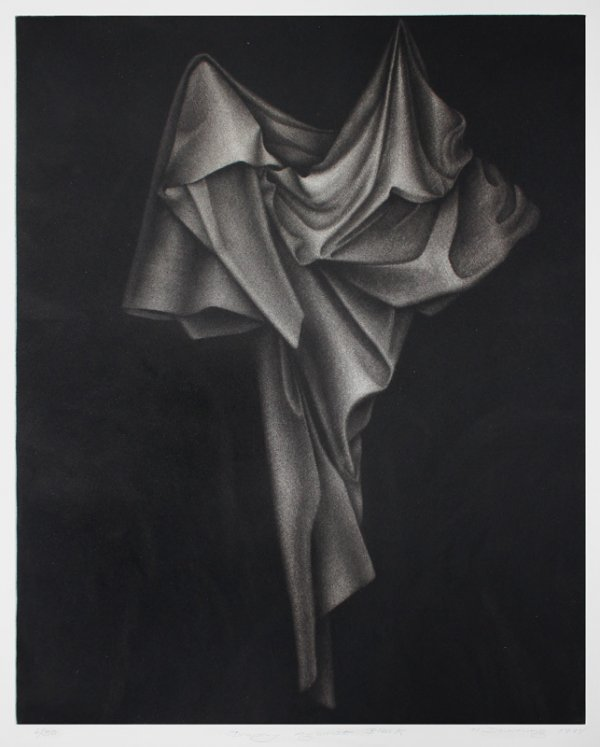 Drapery Against Black by Holly Downing