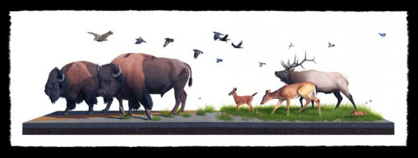 Sowers by Josh Keyes