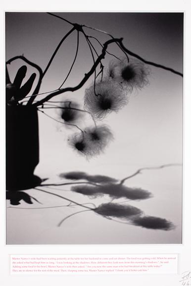 Master Nanyo's Evening Shadows by Joao Penalva