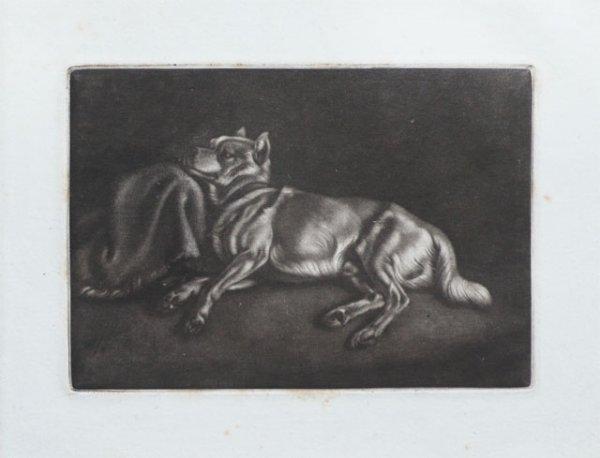 Schlafender Spitzhund by Johann Adam Klein at