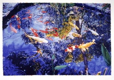 Pond by Joseph Raffael