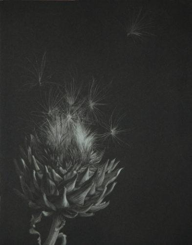 Artichoke by Judith Rothchild