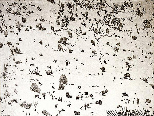 Dry by Mel Pekarsky at VanDeb Editions