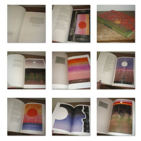 Suns And Moons Portfolio/book by Michael Rothenstein