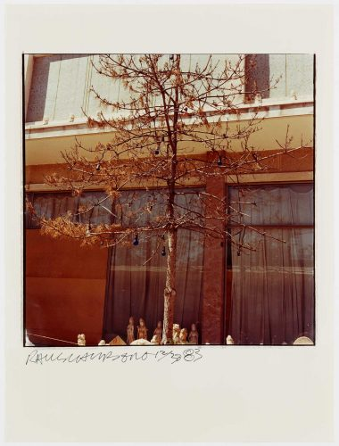 Tree And Bulbs by Robert Rauschenberg
