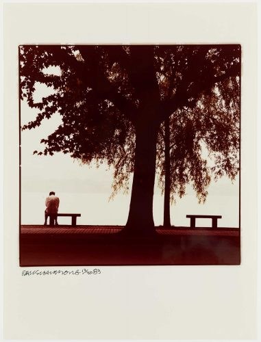 Tree And Man by Robert Rauschenberg