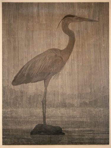 Bird 1 by Richard Ryan at