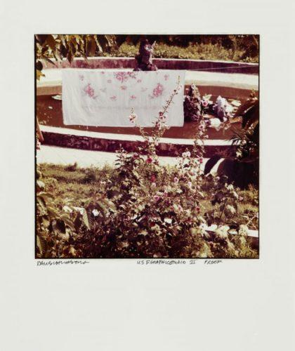 Pink Flower Sheet by Robert Rauschenberg