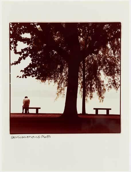Tree And Man by Robert Rauschenberg