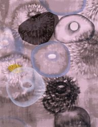 Happiness For Instance I by Ross Bleckner at Michael Lisi/Contemporary Art
