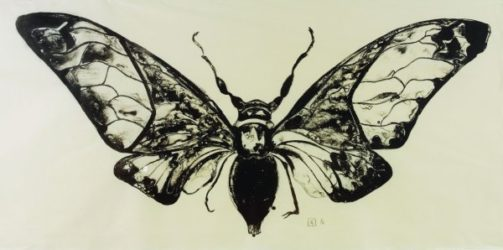 Salvazana Imperialis (black And White) by Sarah Graham at Sims Reed Gallery (IFPDA)