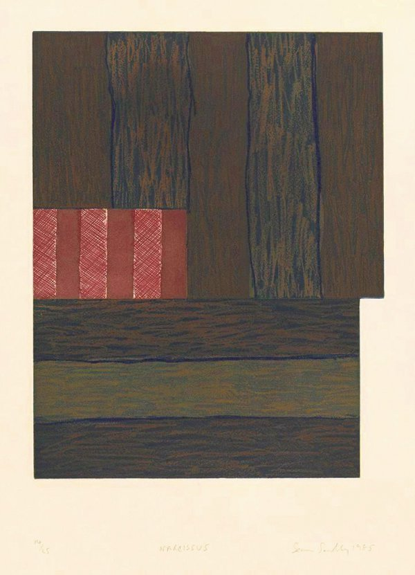 Narcisuss by Sean Scully