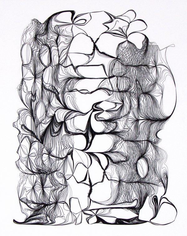Nest 452 by Ted Kincaid