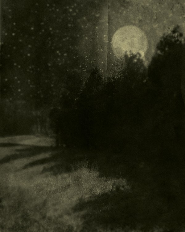 Nocturnal Landscape 88 by Ted Kincaid